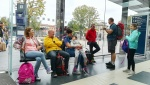 Pellegrinaggio (2).jpg