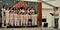 2012_05_3-13 Festa di Paderno 4.jpg