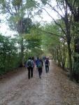 Pellegrinaggio Ardesio (11).JPG